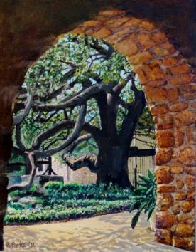 The Alamo Oak, San Antonio