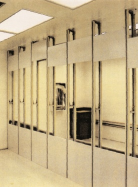 Custom lab wall