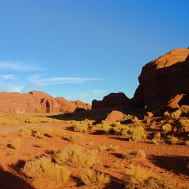 Monument Valley Scrub