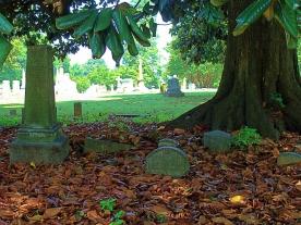 Cemetery Setting