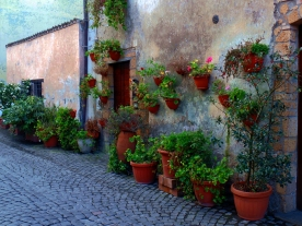 Orvieto: Green Thumb