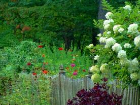 Rigby Flowers