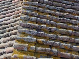 Siena: Rooftop