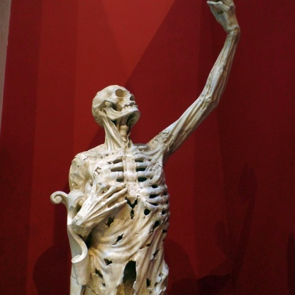 Paris Skeletal Sculpture