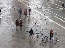 Venice: St. Mark's Square