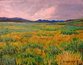 Truckee Meadow