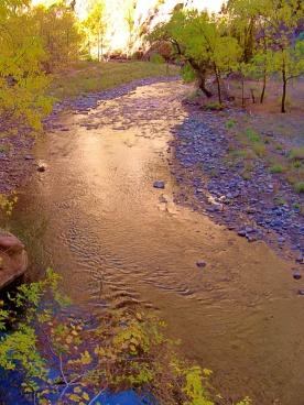 Zion River
