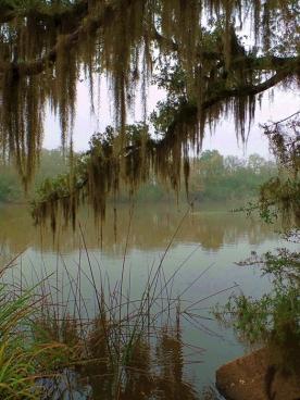 Avert Island Waterway