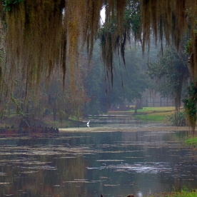 Avery Island Framed View
