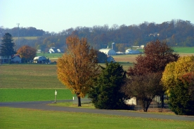 Distant Barns