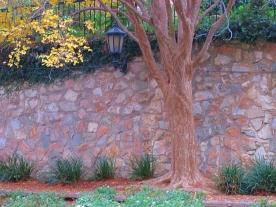 San Antonio Wall