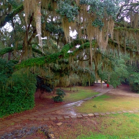 Avery Island Garden